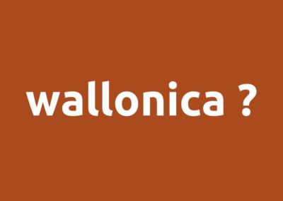 wallonica ?